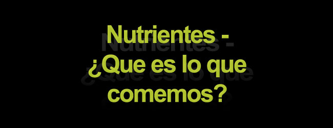 Nutrientes - ¿Que es lo que comemos?